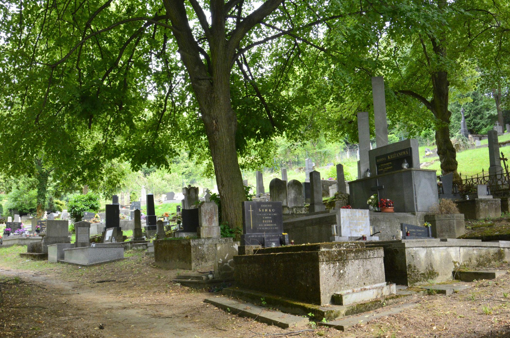 Evanjelický cintorín v Trenčíne