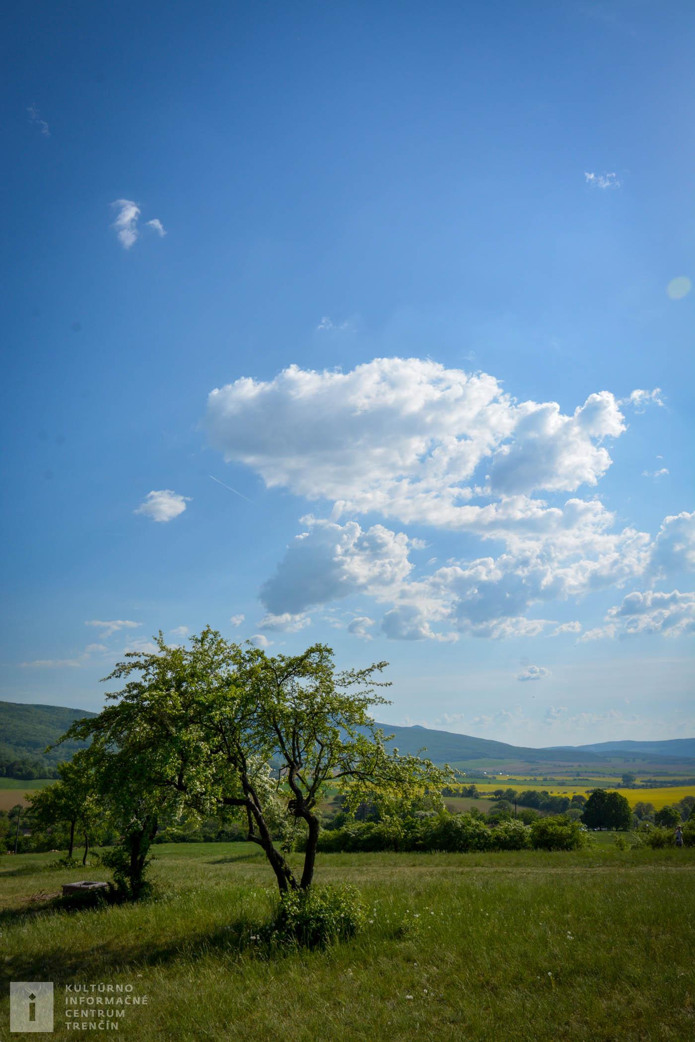 K rozhľadni sa dá pohodlne prísť pešo aj z Trenčína, z lesoparku Brezina
