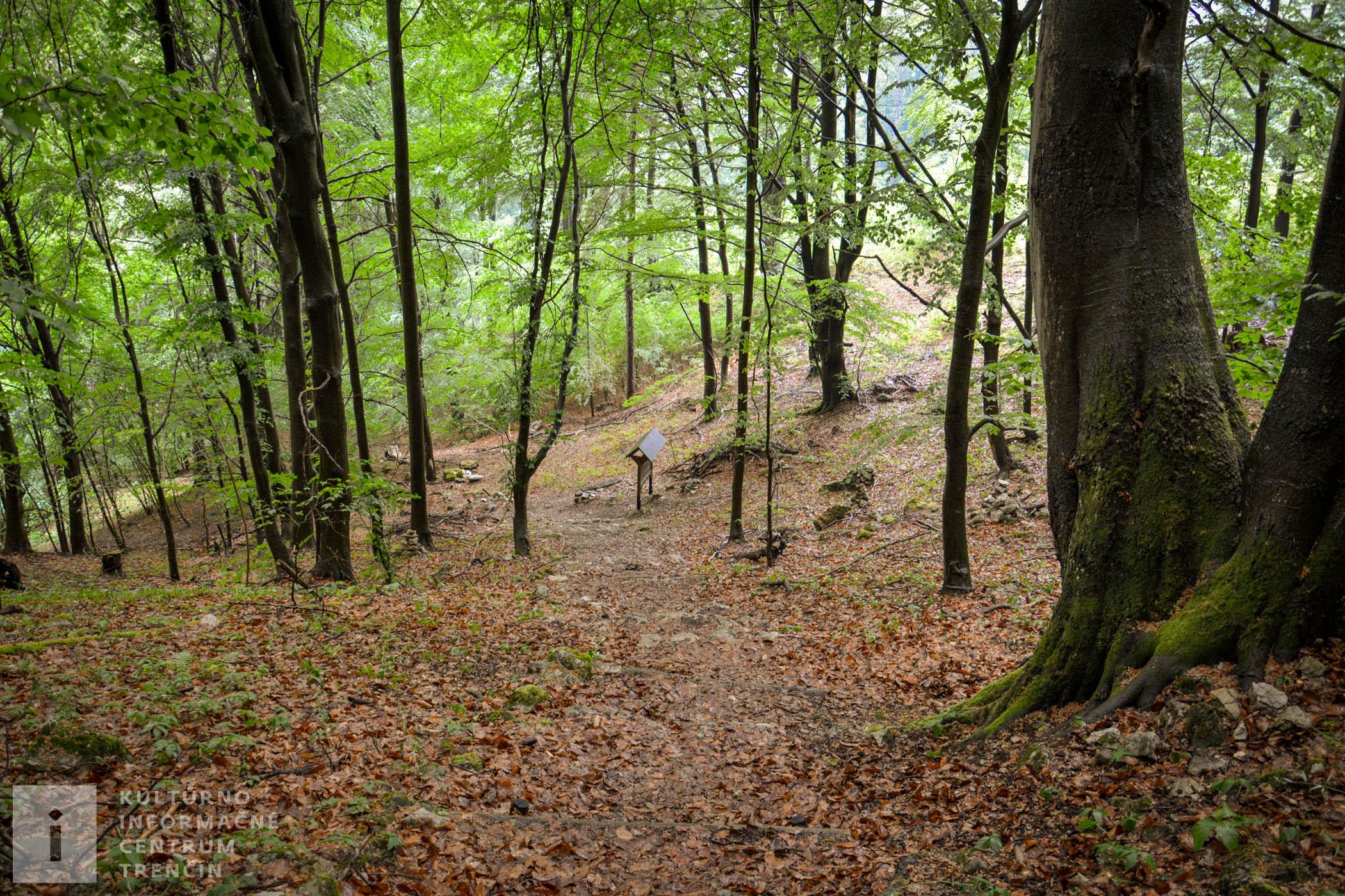 V záverečnej časti chodníka sa pripravte na strmú cestu lesom, kde prekonáte 100 výškových metrov, avšak za tú námahu toto miesto rozhodne stojí.
