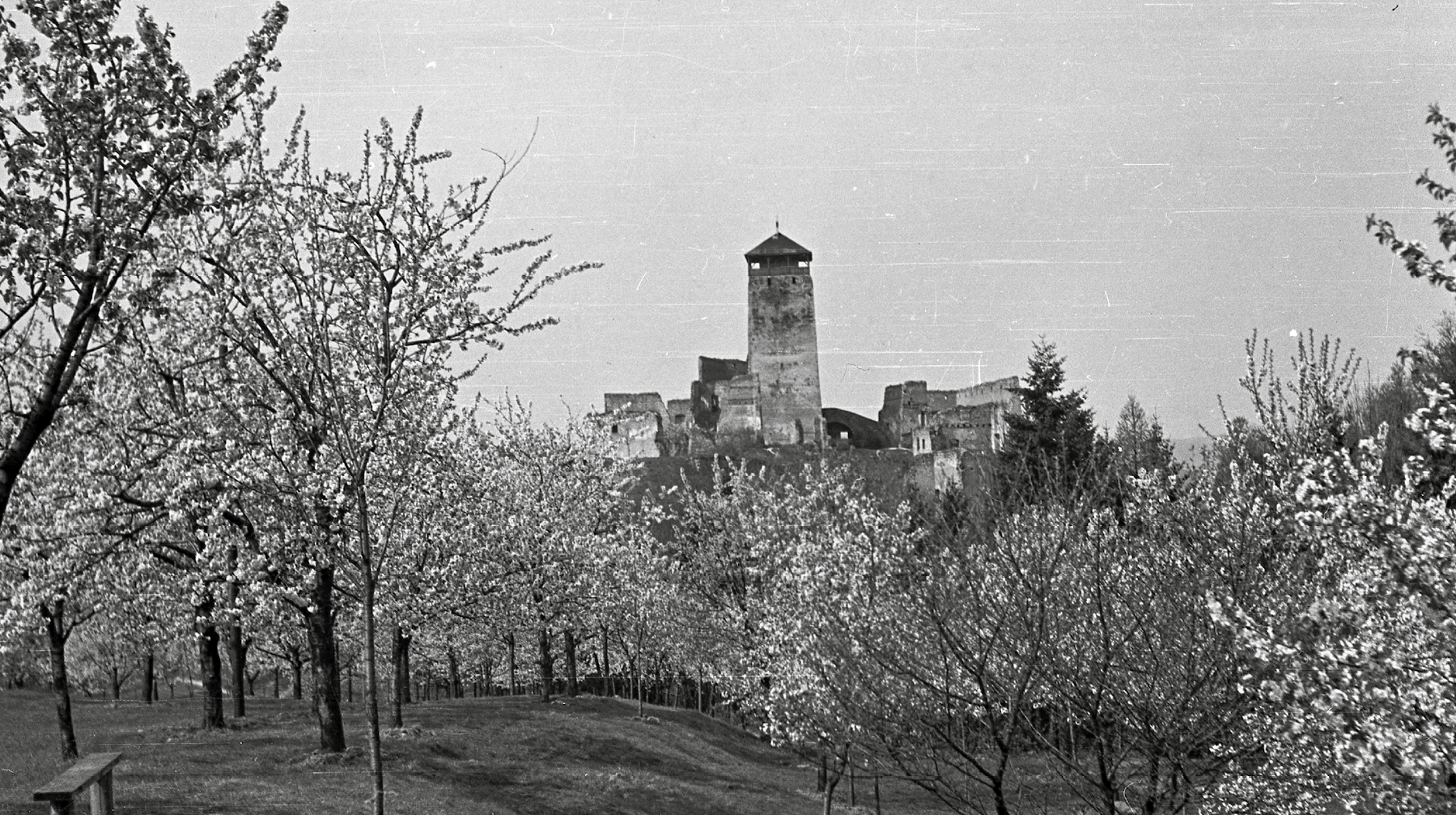 Foto Štefana Pozdišovského z roku 1952