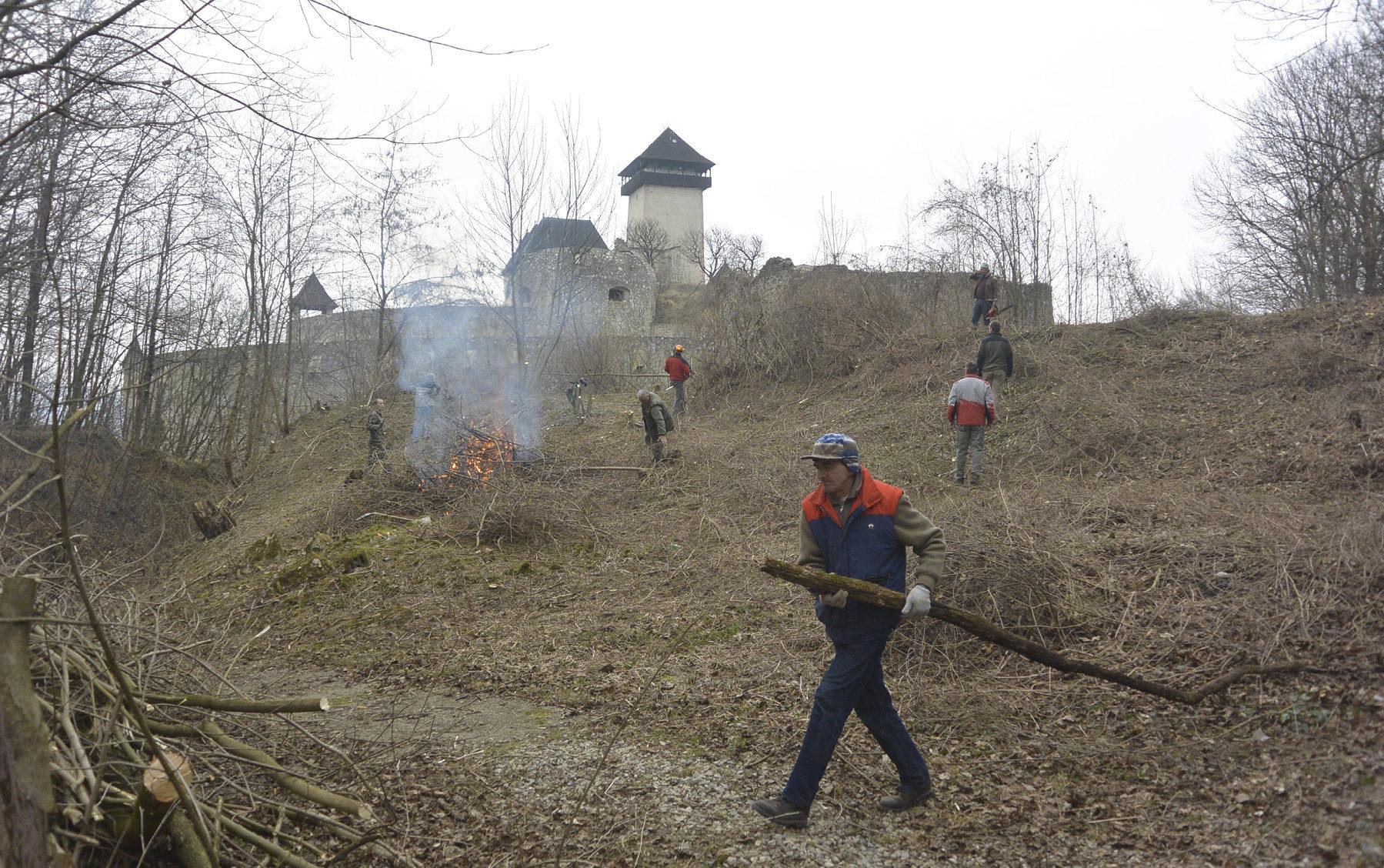 Brigáda v Čerešňovom sade