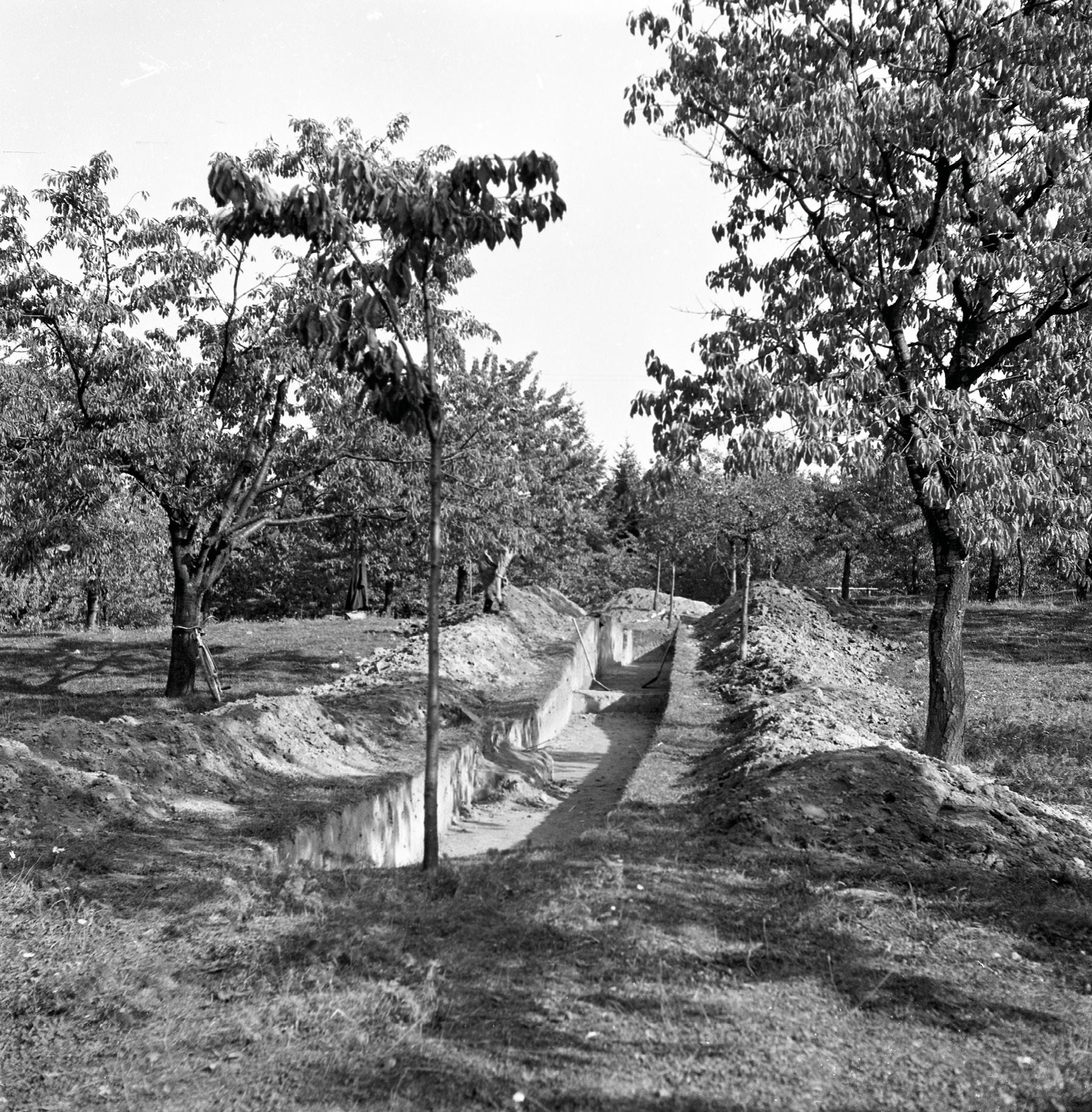 Jedna z piatich sond archeologického prieskumu v Čerešňovom sade v roku 1957