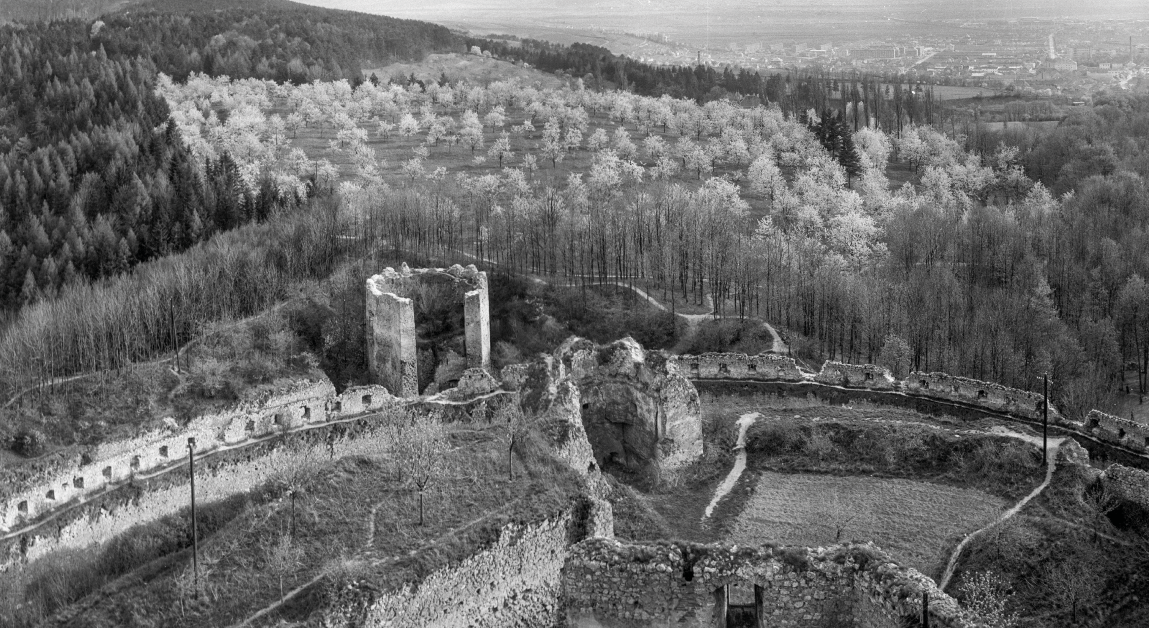 Výhľad na Čerešňový sad z Matúšovej veže