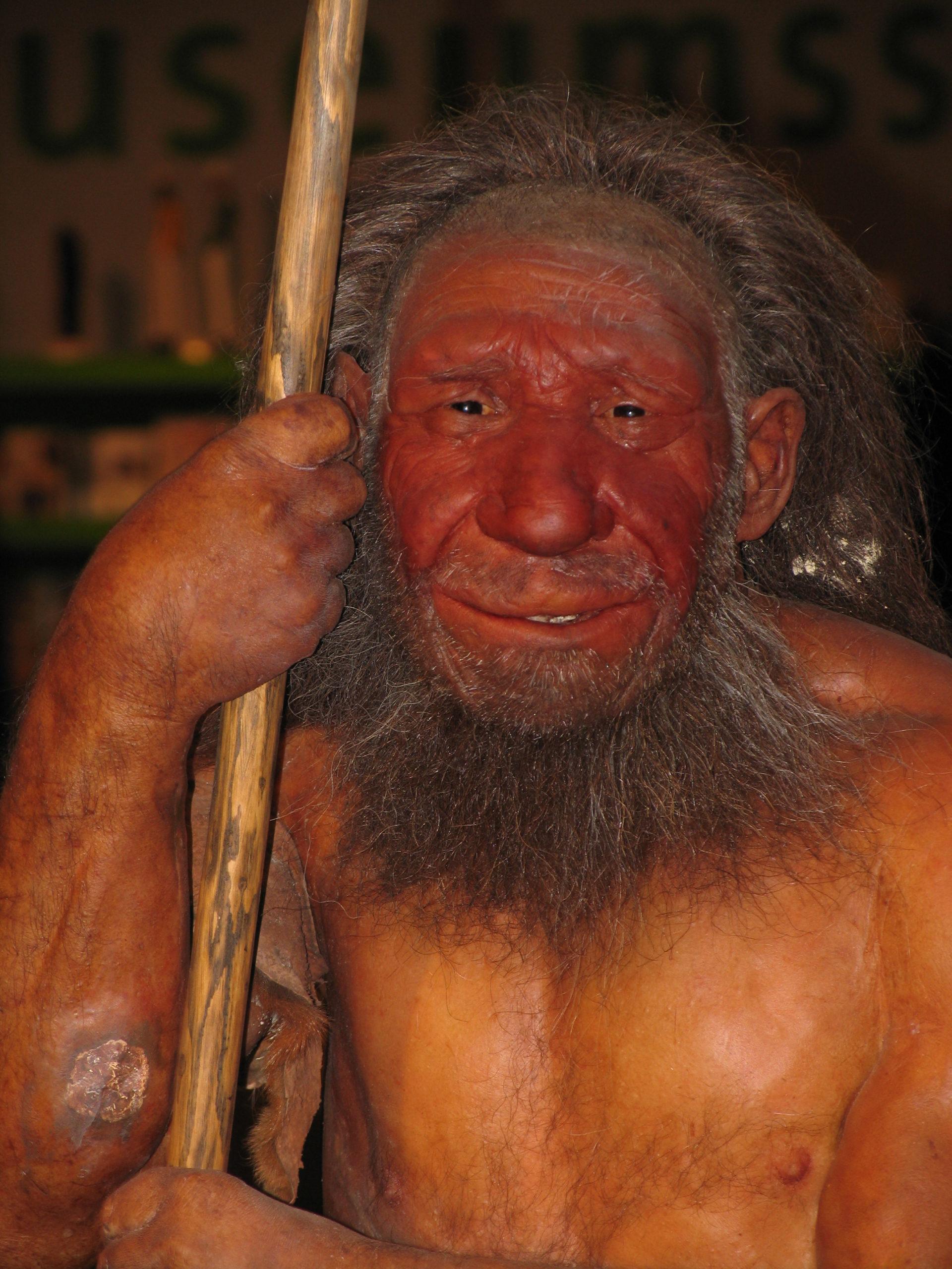 Možná podoba neandertálca